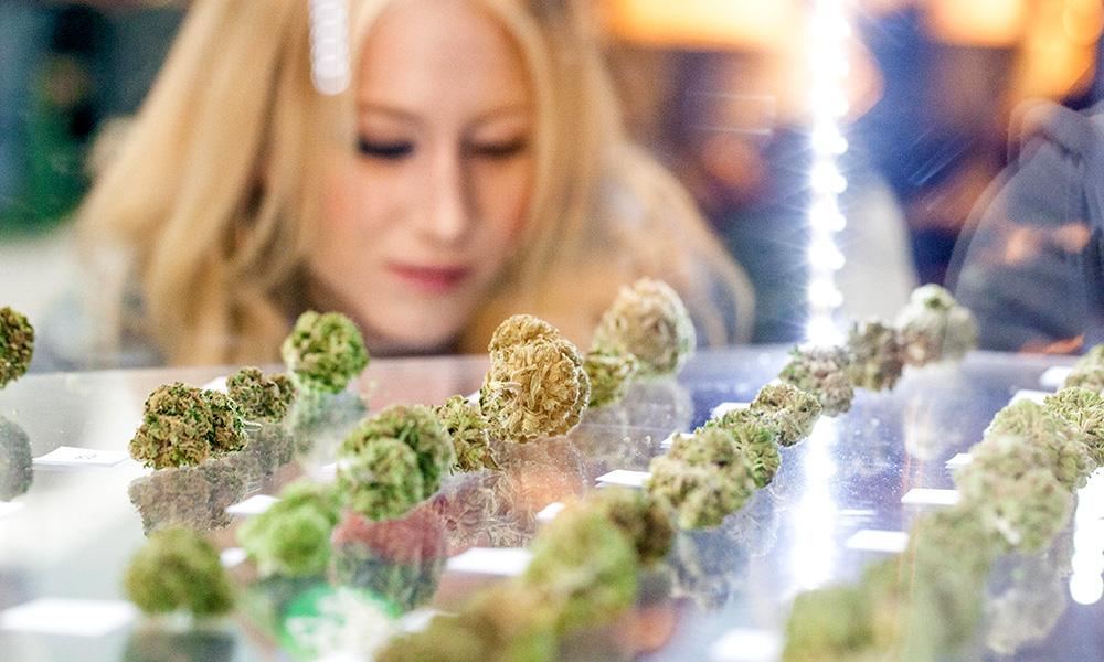 Cannabis-Nugs-On-Glass-Shelf