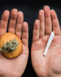 Body Or Mind: Edible High Vs. Smoker's High