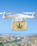 The Future Of Weed Delivery Services