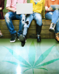 What Is Weed College And How Can I Apply?